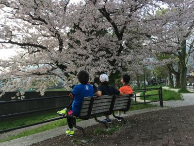 なかなか咲かなかった今年の桜_f0220089_17110603.jpg