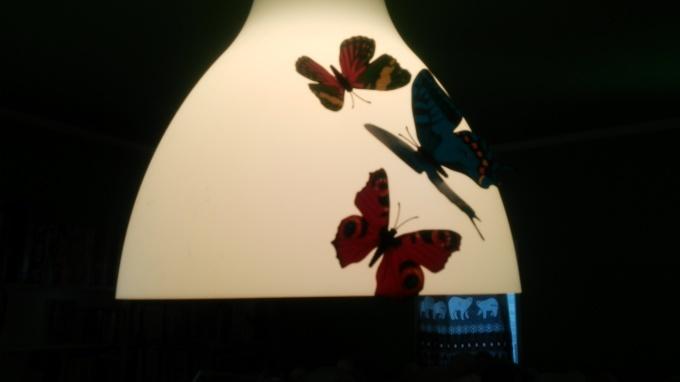 蝶々苦手な方はスルーしてくださいませm(_ _)m_c0350439_12281161.jpg