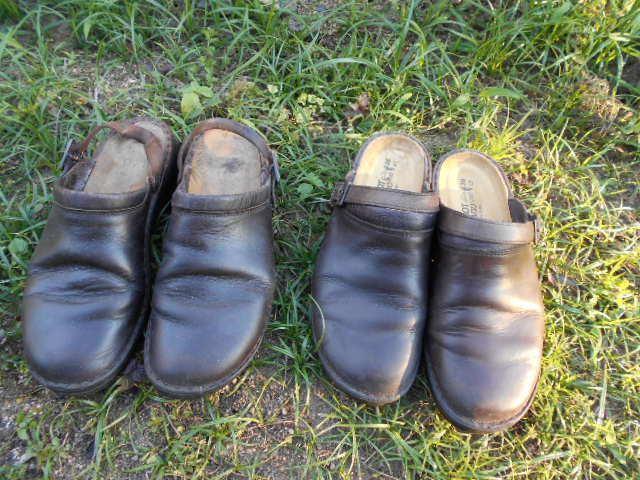 生まれ変わったナオトの靴_f0328051_20372546.jpg