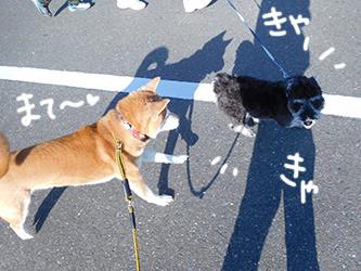 伊佐兄とおいかけっこリオ君_b0057675_09132191.jpg