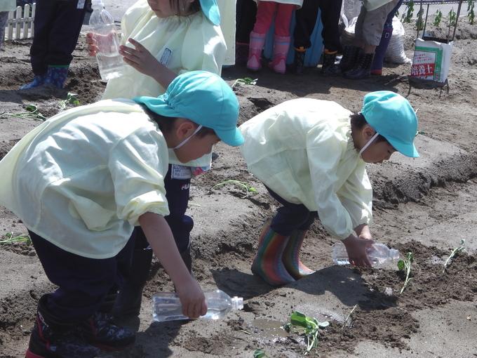 すみれ組さんの初体験_f0195982_18121158.jpg