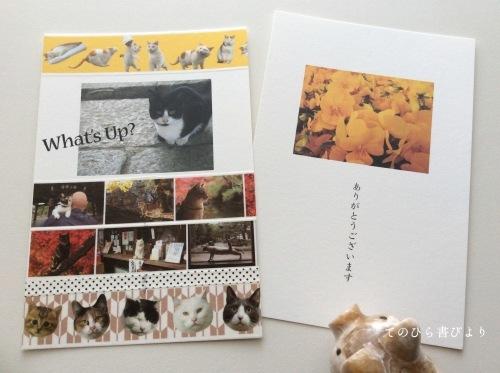 「切手の博物館Otegamiフリマ2017SUMMERコレクション」小型印×岩合光昭写真展「ねこの京都」マステでお便り_d0285885_12444392.jpg