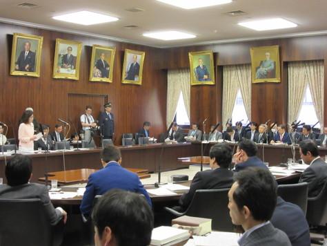 5/30 法務委員会で質問しました。_f0150886_20153699.jpg