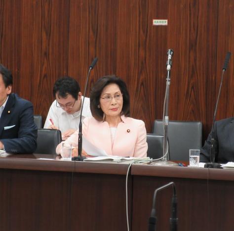 5/30 法務委員会で質問しました。_f0150886_202255.jpg