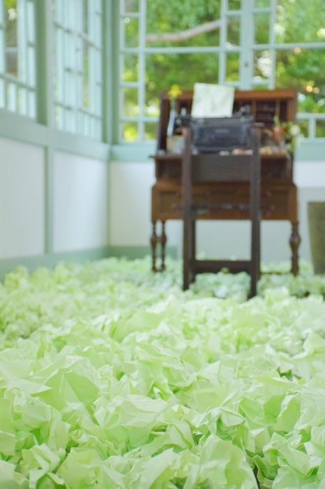 花と器のハーモニー 前編_a0354912_20403109.jpg