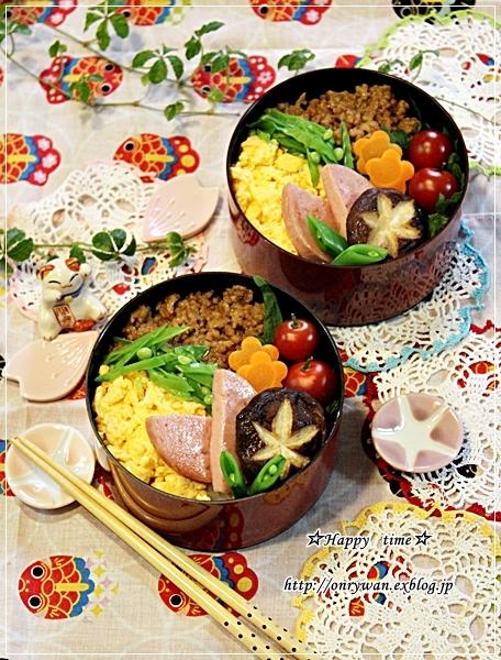 3色そぼろ弁当と今日のわんこ♪_f0348032_18081896.jpg