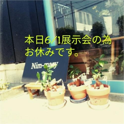 d0345853_05514964.jpg