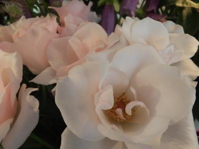 オークリーフ(和花)_f0049672_11580191.jpg