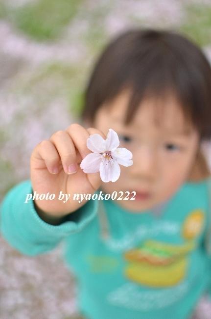 e0365414_13543318.jpg
