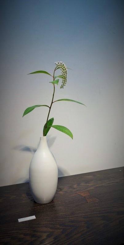 白磁、青磁と季節のお花…_b0232919_13001987.jpg