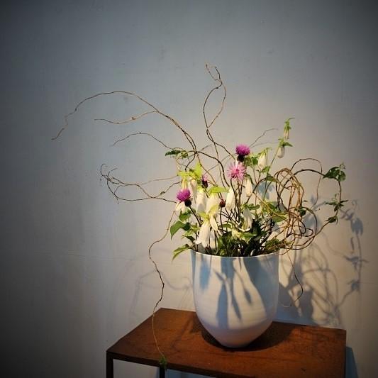 白磁、青磁と季節のお花…_b0232919_13012132.jpg