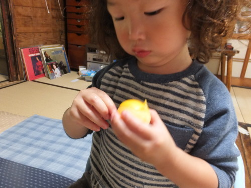 好きな果物は田舎の味_d0336460_03581296.jpg