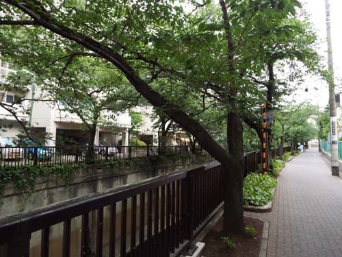ぐるっとパスNo.7・番外編 五島美術館と宮本三郎記念美まで見たこと_f0211178_15582545.jpg