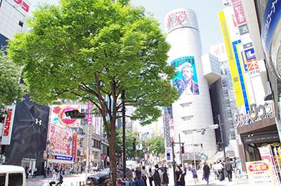 6月2日(金)今日の渋谷109前交差点_b0056983_18465180.jpg
