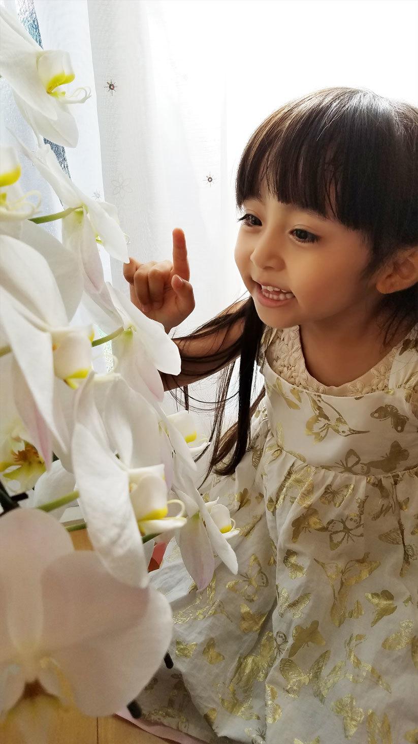 「お花さんおはよう。今日も、綺麗ね♡」算数や文字、そして色んなお勉強。_d0224894_11315276.jpg