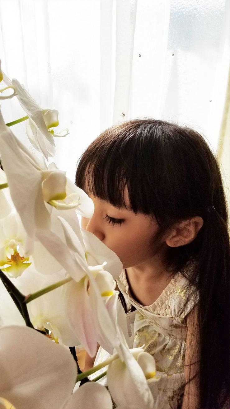 「お花さんおはよう。今日も、綺麗ね♡」算数や文字、そして色んなお勉強。_d0224894_11365409.jpg