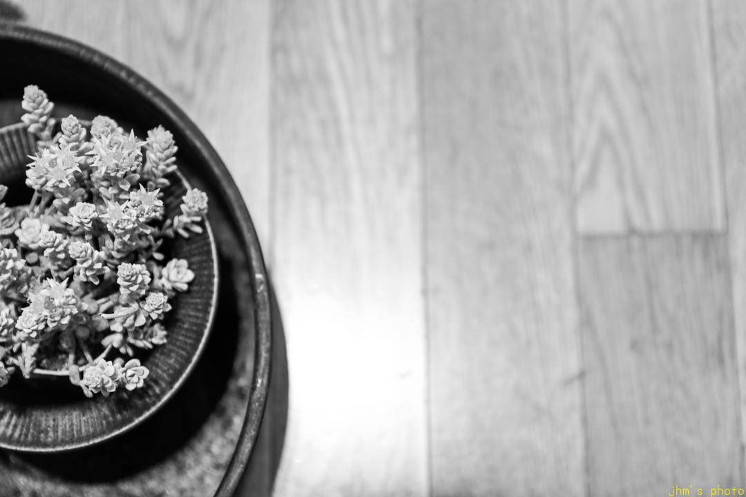 花と器_a0158797_23263494.jpg