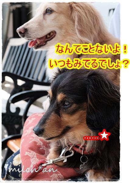 b0115642_22511388.jpg