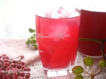 赤紫蘇ジュースと赤紫蘇染め 2013_b0255144_01052527.jpg