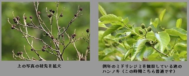 b0363649_00350120.jpg