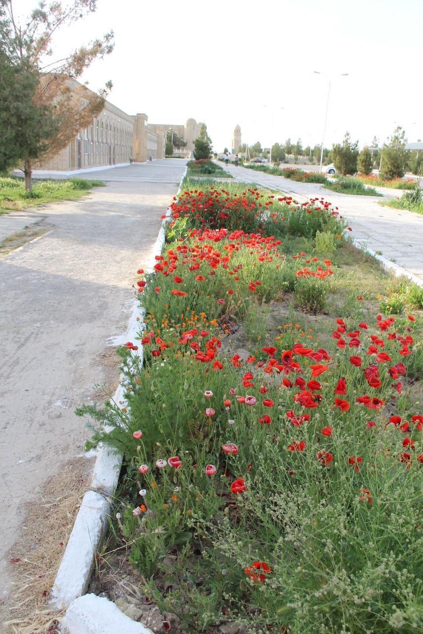 トルクメニスタンの旅(19) メルブ遺跡 スルタン・サンジャール廟_c0011649_08435601.jpg