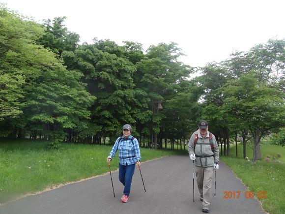 初登場!前田森林公園でノルディック!_d0198793_18403260.jpg