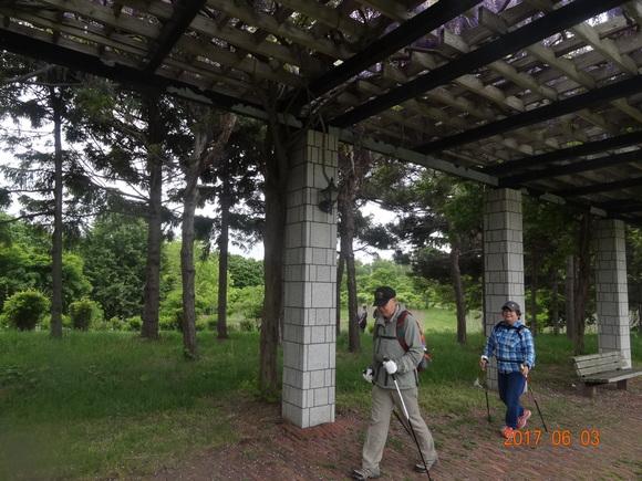 初登場!前田森林公園でノルディック!_d0198793_1853197.jpg