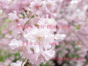 b0255144_13284659.jpg