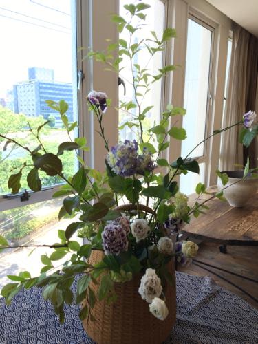 紫陽花の季節です_d0139350_12263714.jpg