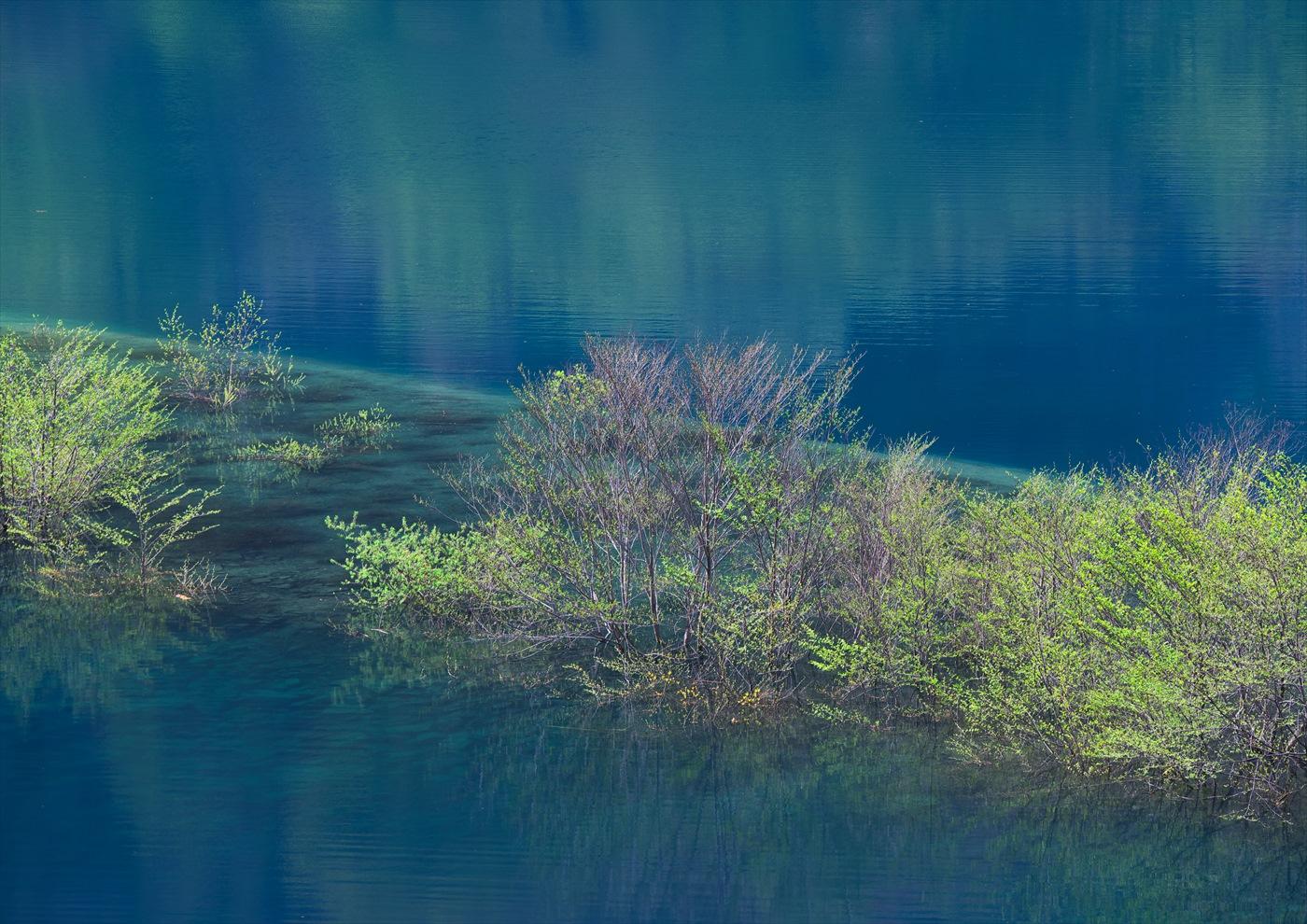 奥四万湖 4_f0018464_19563119.jpg