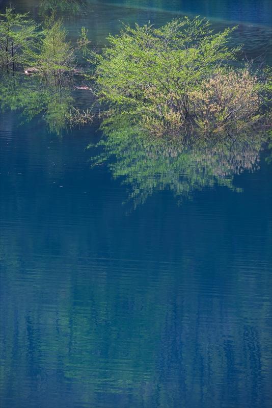 奥四万湖 4_f0018464_1956422.jpg