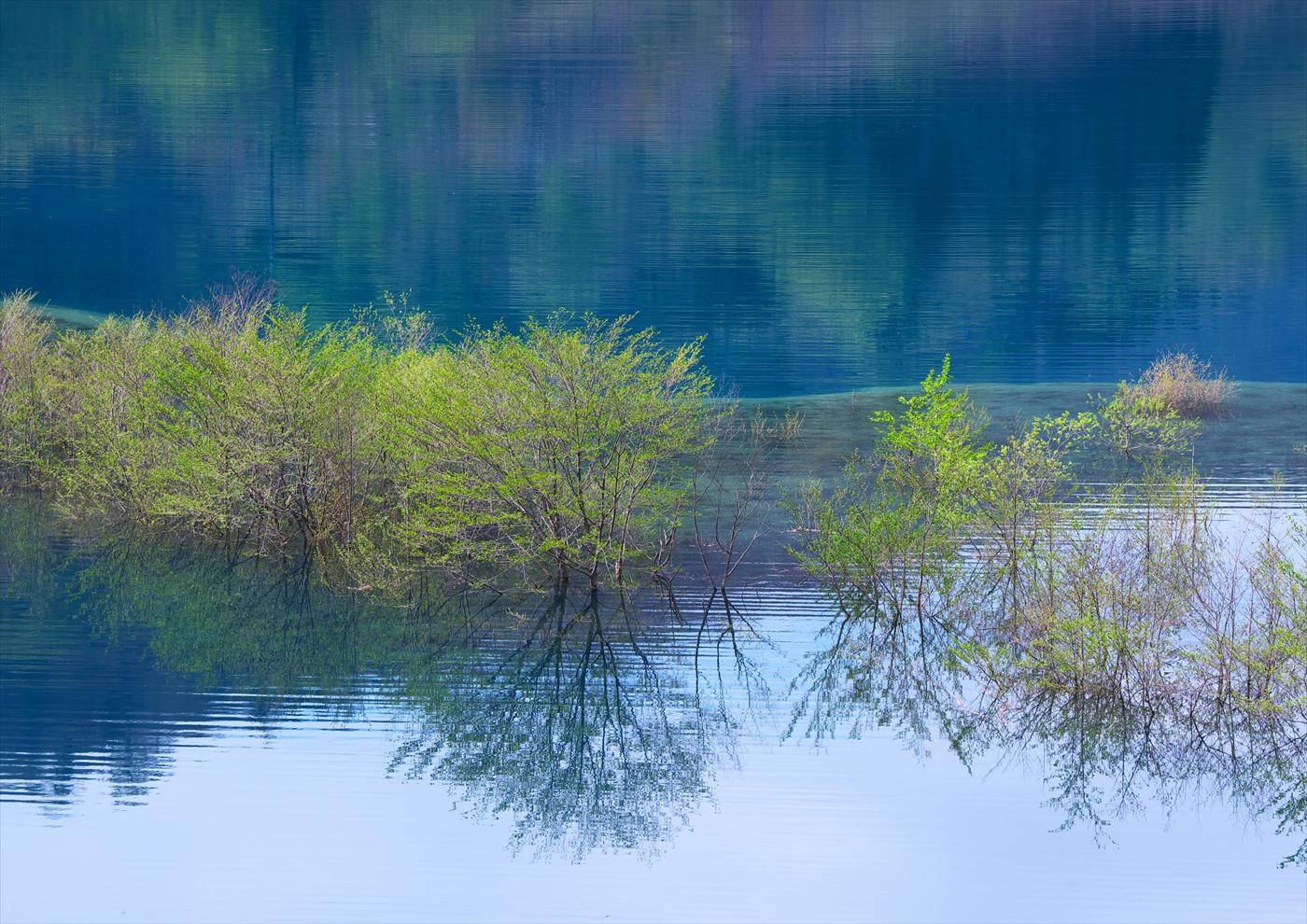 奥四万湖 4_f0018464_2020132.jpg