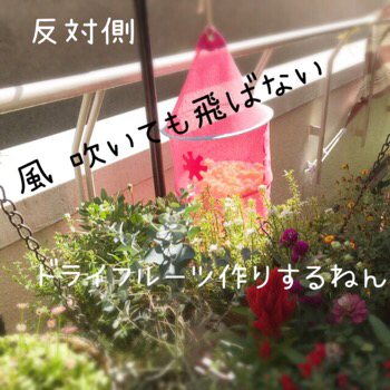 f0322570_16470876.jpg