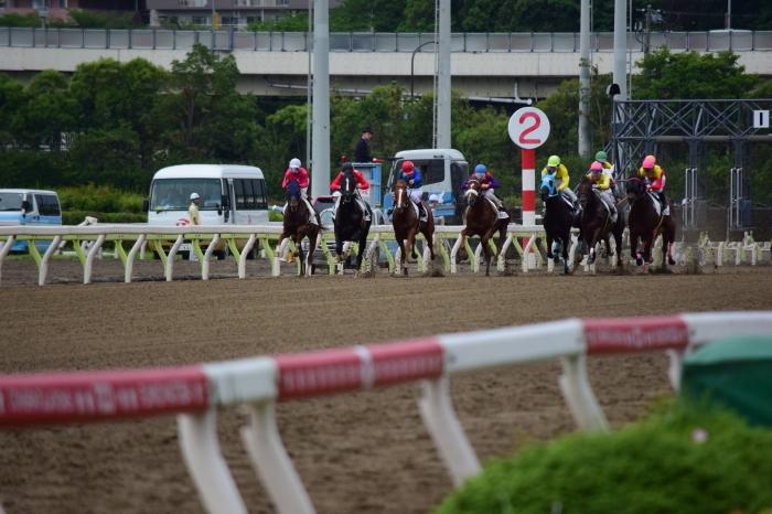 東京シティ競馬_a0127090_01443555.jpg