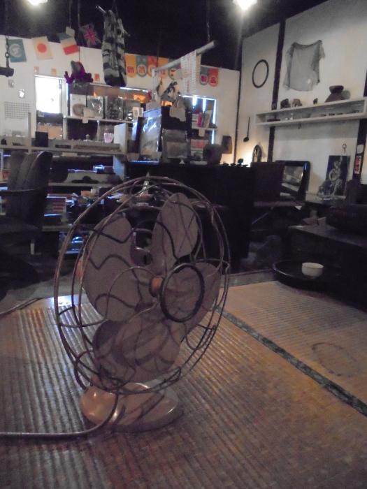 扇風機とのせめぎ合い_e0350308_20020232.jpg