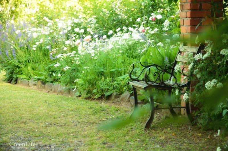 The Secret Garden #3_f0321522_14363875.jpg