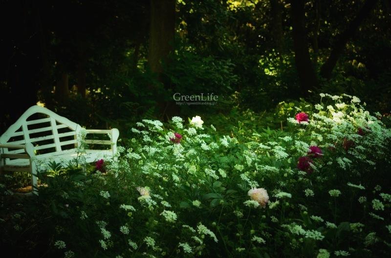 The Secret Garden #3_f0321522_14382682.jpg