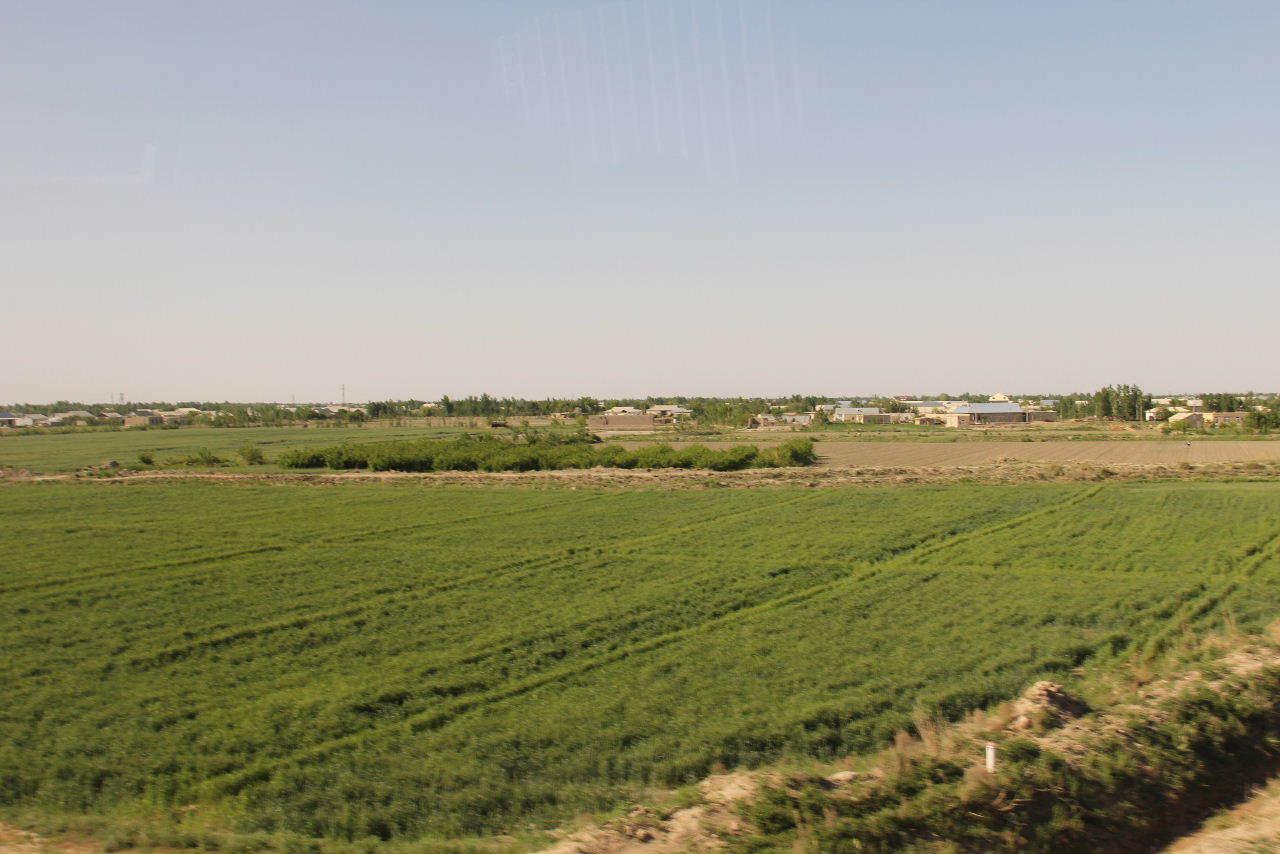 トルクメニスタンの旅(21) マリィからウズベキスタンのブハラへ移動_c0011649_14173832.jpg
