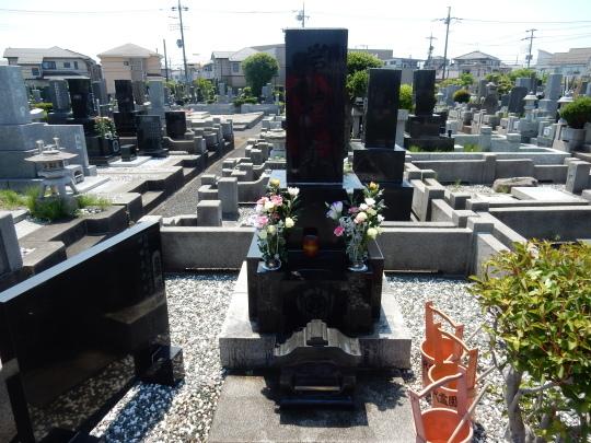 '17,6,5(月)3.成田~ヘルシンキ~リュブリャーナ!_f0060461_11341101.jpg
