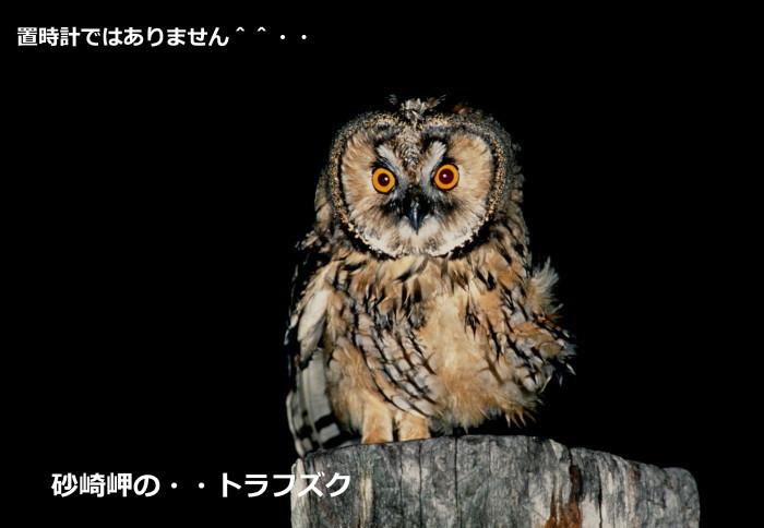 c0229170_20103892.jpg