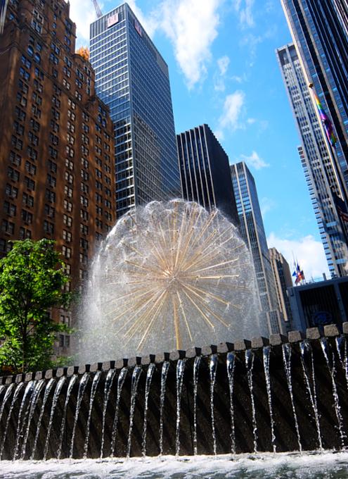 ニューヨークの中心で噴水と紫陽花と_b0007805_7443458.jpg