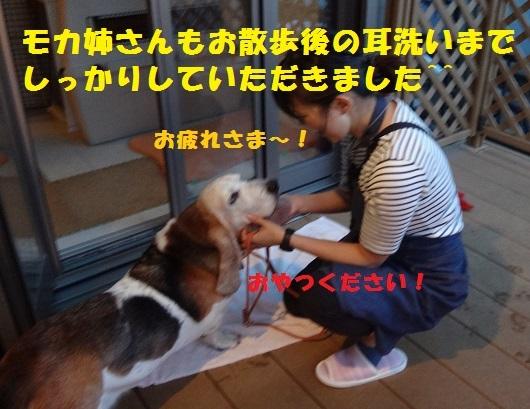 f0121712_16282638.jpg
