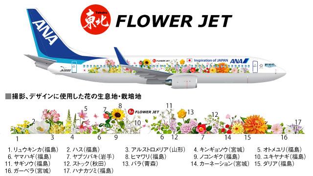 東北 FLOWER JET。_b0044115_8345021.jpg