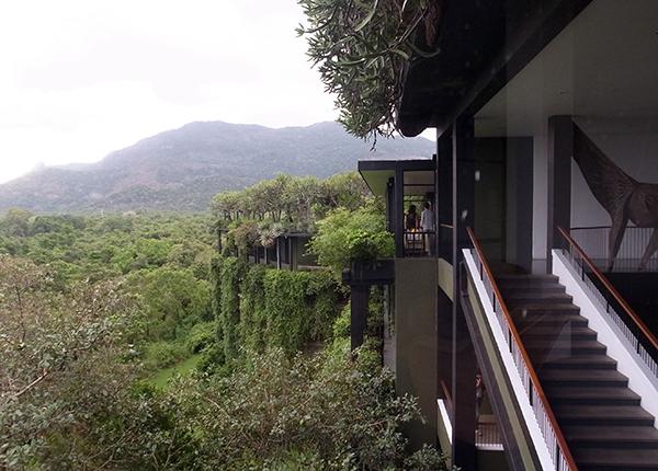 スリランカ旅行_b0038919_16072190.jpg