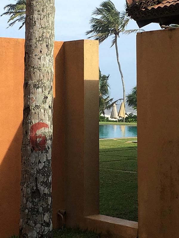 スリランカ旅行_b0038919_16074444.jpg