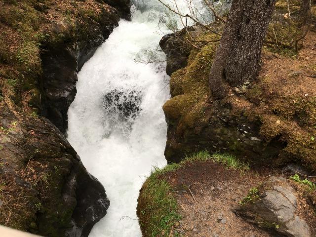 ウィナー・クリーク・トレイル Winner Creek Trail_b0135948_18332599.jpg
