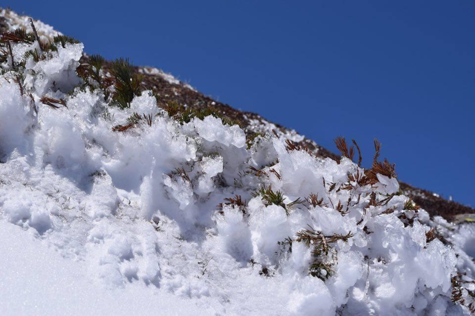白雲岳へ行ってきました_d0198793_11234072.jpg