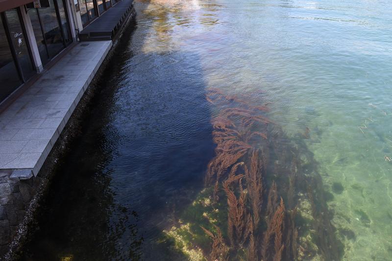 on the bridge_e0374932_15483396.jpg