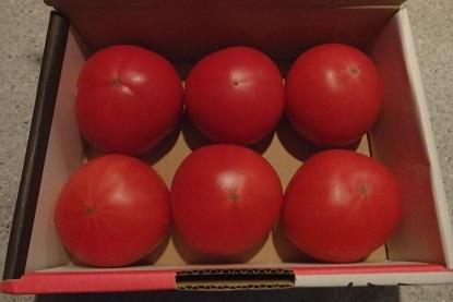 美味しいお土産 「エディブルフラワー (食べことのできるお花)」と完熟トマト。_f0362073_04381646.jpg