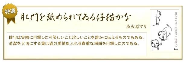 f0053297_15120296.jpg